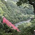 Photos: やまびこ展望台より(黒部市)