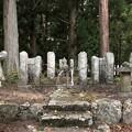 Photos: 仁科神社(仁科城・森城。大町市)仁科盛遠 髻(もとどり)塚