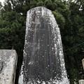 仁科神社(仁科城・森城。大町市)仁科公忠烈碑