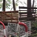 Photos: 木崎湖キャンプ場(仁科城・森城。大町市)