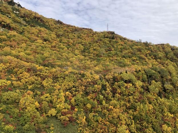 立山ロープウェイ景観(立山町)
