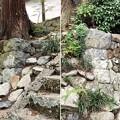 Photos: 廣澤寺(松本市)