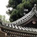 廣澤寺(松本市)鐘楼堂