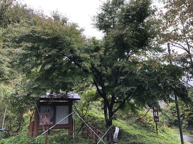 内裏屋敷跡・月夜ノ陵(長野市鬼無里)紅葉