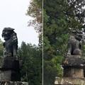 白髯神社(長野市鬼無里)狛犬