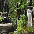 Photos: 鬼無里神社(長野市鬼無里)神威輝八紘