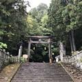 Photos: 戸隠神社(長野市。宝光社)
