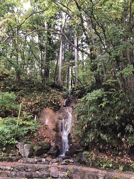 戸隠神社(長野市。中社)