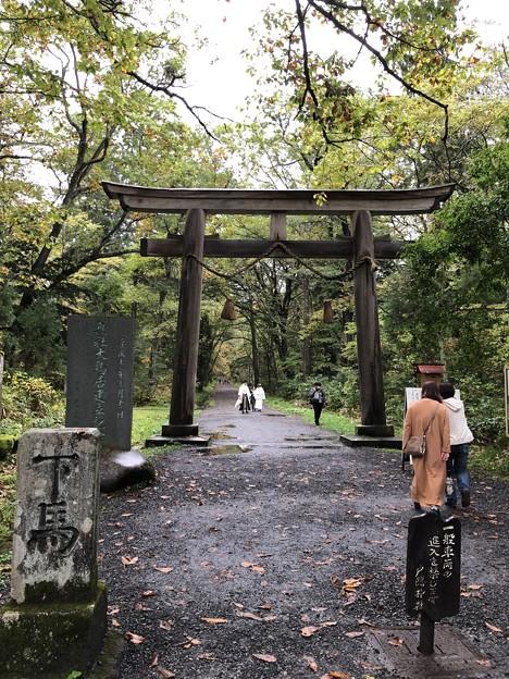 戸隠神社(奥社・九頭龍社)参道
