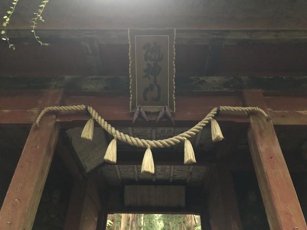 戸隠神社(奥社・九頭龍社)随神門