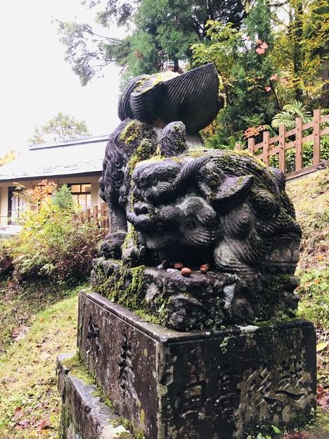 戸隠神社(奥社・九頭龍社)狛犬