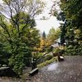 Photos: 戸隠神社(奥社・九頭龍社)