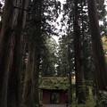 Photos: 戸隠神社(奥社・九頭龍社)随神門