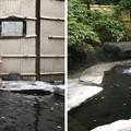 中尾山温泉 松仙閣(長野市)
