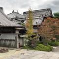 Photos: 善光寺(長野市元善町)参道