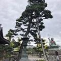 Photos: 善光寺(長野市元善町)山門前