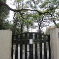 松平伯耆守宮津藩下屋敷跡(墨田区横網1丁目)旧安田庭園
