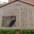 椎の木屋敷跡(松浦豊後守上屋敷跡。墨田区横網1丁目)