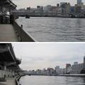 Photos: 11.03.24.隅田川(墨田区横網1丁目 旧安田庭園西手河岸より)