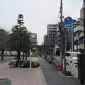 11.03.24.津軽藩上屋敷跡(墨田区亀沢2丁目)緑町公園交差点