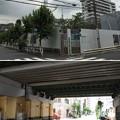 Photos: 15.06.23.津軽藩上屋敷跡(墨田区亀沢2丁目 緑町公園)