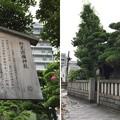 Photos: 15.06.23. 野見宿禰神社(墨田区亀沢2丁目)