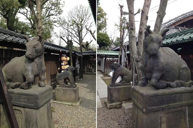 14.02.23.牛嶋神社(墨田区向島)