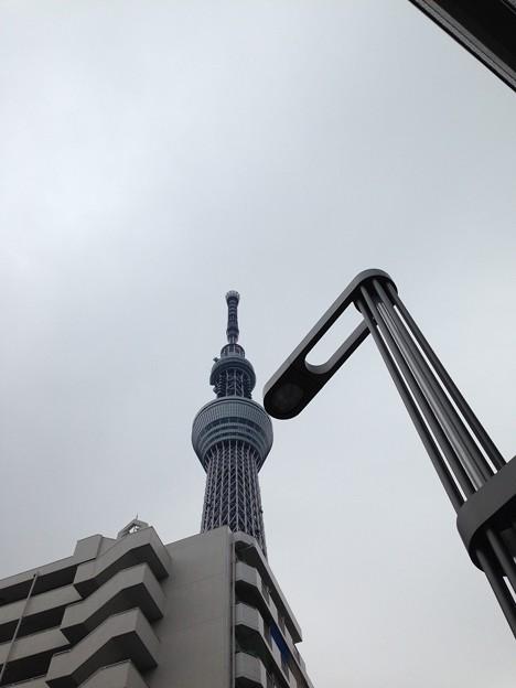 東京スカイツリー(言問橋東交差点。墨田区向島)