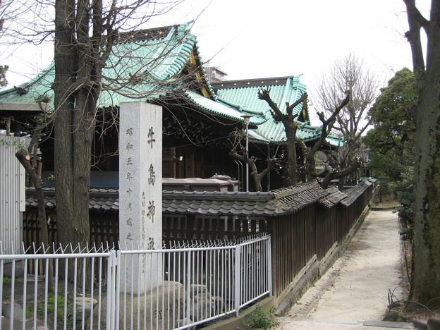 11.03.14.牛嶋神社(墨田区向島)