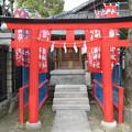 Photos: 牛嶋神社(墨田区向島)小梅稲荷神社
