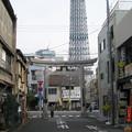 牛嶋神社(墨田区向島)参道