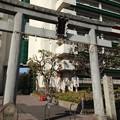 14.02.27.隅田川神社(墨田区堤通2丁目)