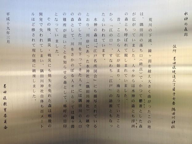 隅田川神社(墨田区堤通2丁目)水神の森跡