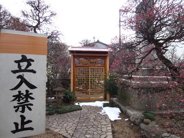 14.02.13.小村井香取神社(墨田区文花2丁目)香梅園