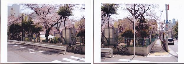 Photos: 05.04.06.松平左衛門尉中屋敷跡(墨田区両国4丁目)両国公園