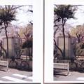 05.04.06.松平左衛門尉中屋敷跡(墨田区両国4丁目)両国公園