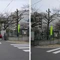 Photos: 11.03.24.松平左衛門尉中屋敷跡(墨田区両国4丁目)両国公園