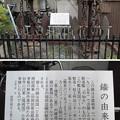 11.03.24.駆逐艦不知火錨(墨田区立両国小学校)