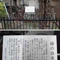 Photos: 11.03.24.駆逐艦不知火錨(墨田区立両国小学校)