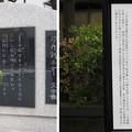 11.03.24.芥川龍之介文学碑(墨田区立両国小学校)