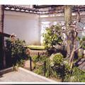 Photos: 05.04.06.吉良上野介上屋敷跡(墨田区両国3丁目)吉良義央首洗い井戸