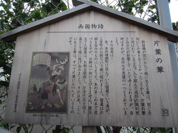 駒止橋跡(墨田区両国1丁目)本所七不思議 片葉の葦
