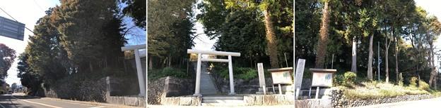 二宮神社(あきる野市)東面