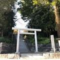 Photos: 二宮神社(あきる野市)東面