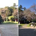 二宮神社(あきる野市)境内