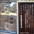 Photos: 二宮神社(あきる野市)