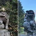 二宮神社(あきる野市)狛犬