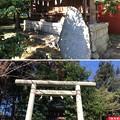 Photos: 二宮神社(あきる野市)五社神社