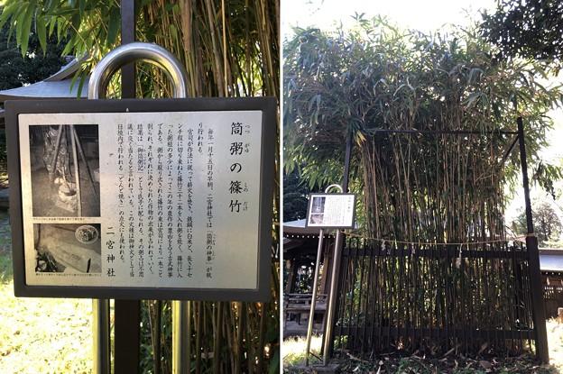 Photos: 二宮神社(あきる野市)篠竹
