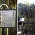二宮神社(あきる野市)篠竹